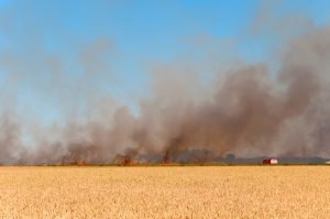 Feuerwehrfahrzeuge löschen Brand, Brandenburg